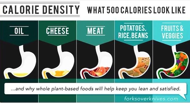 Nutrition Density | What is it?